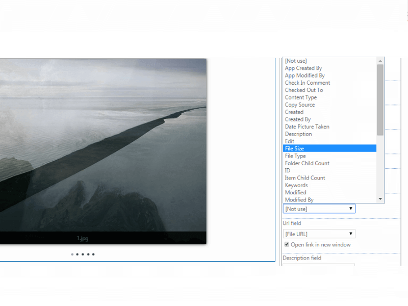Image Slider Add-in - Filter images for displaying